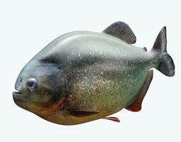 Piranha 2 3D