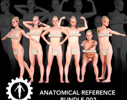 Anatomical Reference Bundle 002 3D model