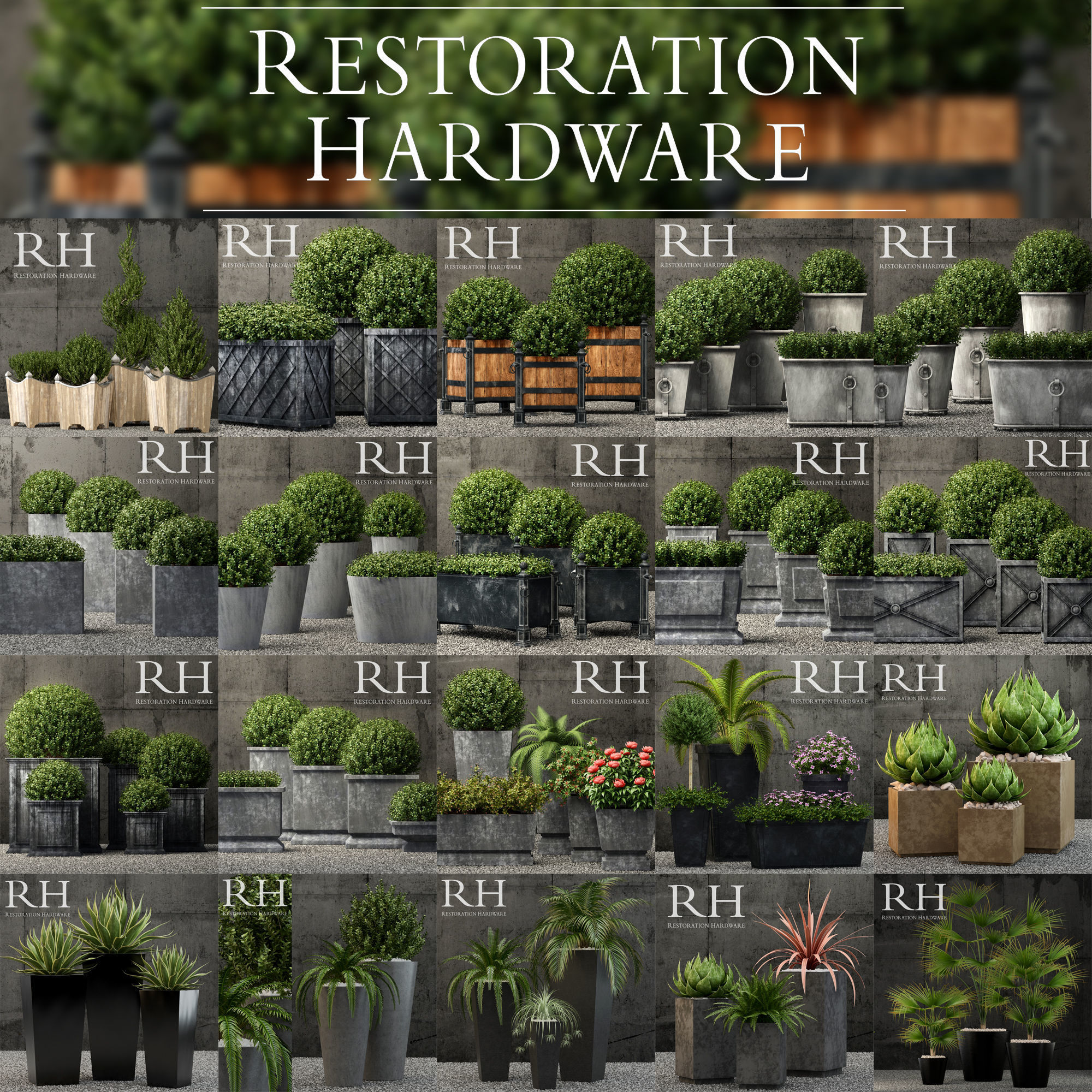 Plants vol 1 restoration hardware planters