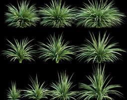 3D asset Plants for the exterior