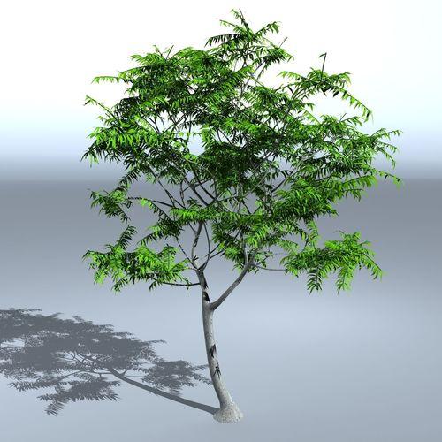 tree 05 3d model max obj mtl 3ds fbx 1