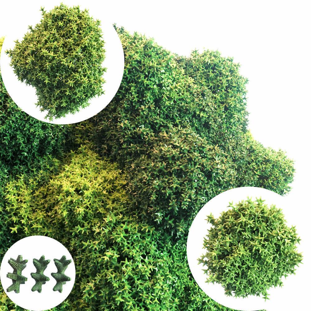 Moss Set
