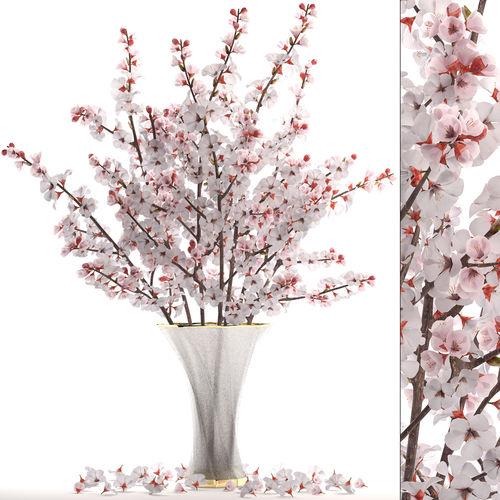 sakura bouquet 3d model max obj mtl fbx 1