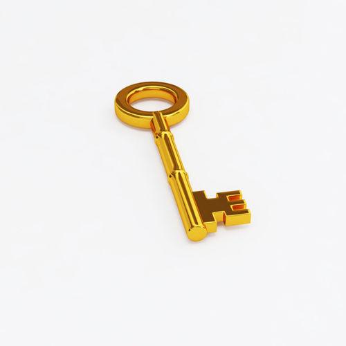 gold key business 3d model max obj mtl 3ds fbx 1