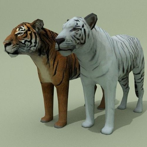 lowpoly tigers 3d model low-poly obj mtl 3ds fbx blend 1