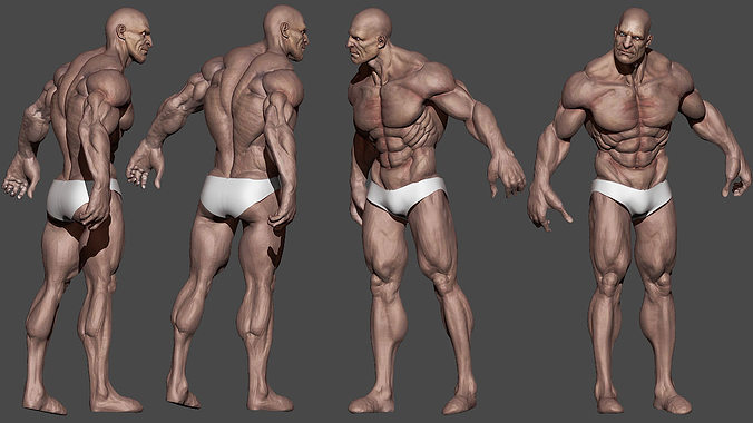 3d model human male character vr / ar / low-poly obj mtl, Muscles