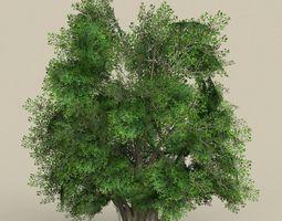 3D model Game Ready Tree 03