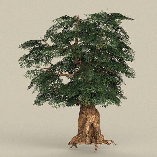 game ready tree 05 3d model low-poly max obj mtl fbx c4d ma mb 1