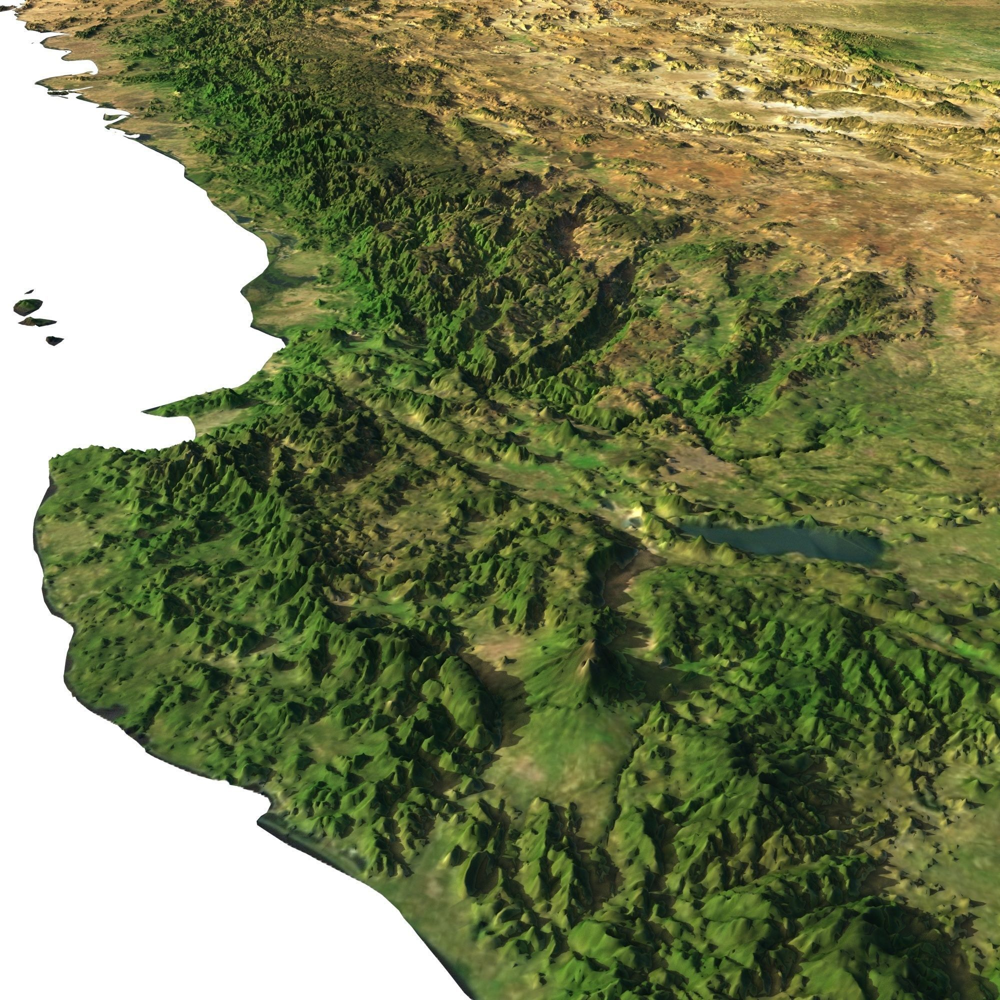 High Detailed Relief Map Of Usa Canada Mexico 3d