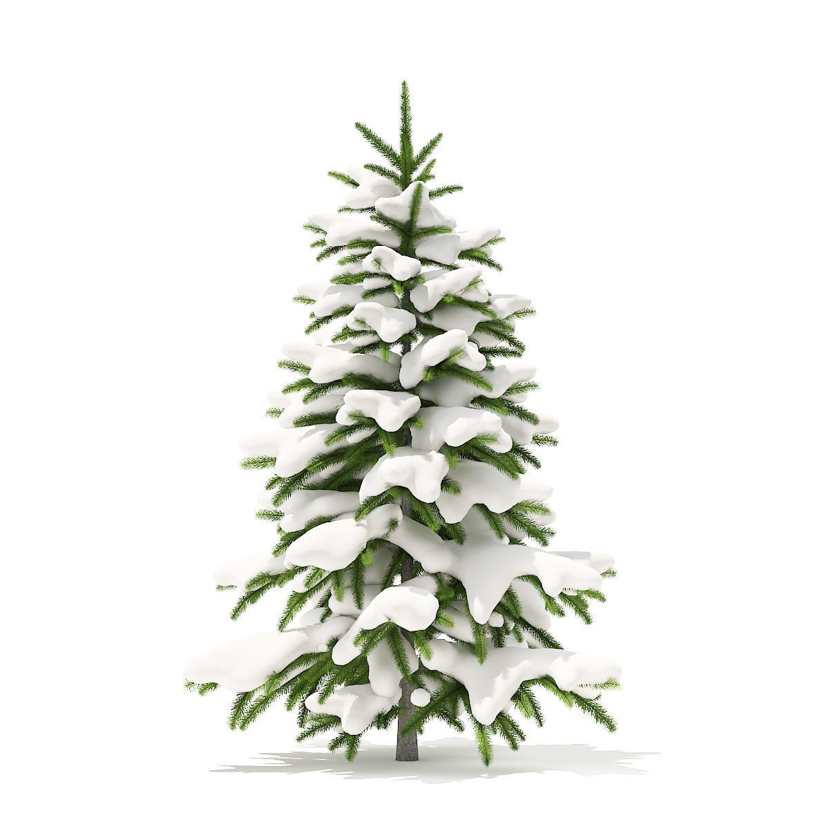 Fir Tree with Snow 1point2m