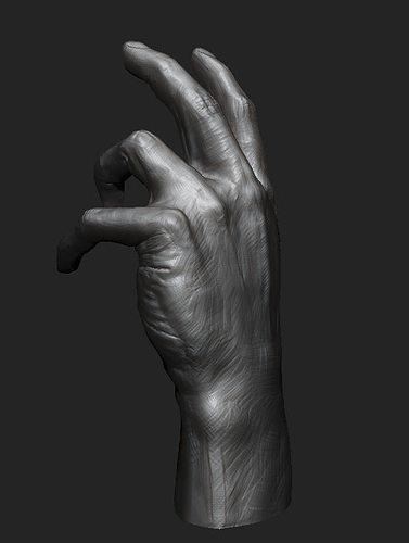 hand study 3d model obj mtl 1
