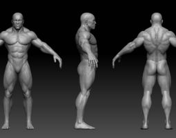 3d asset game-ready muscular male body