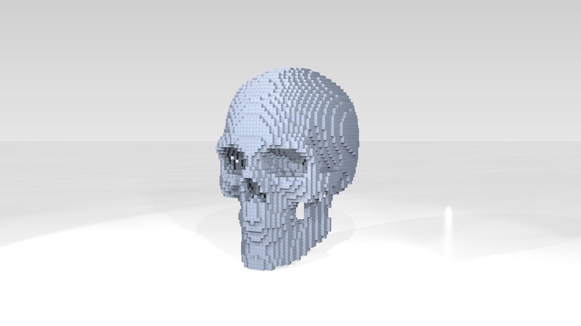 Skull Voxel | 3D model