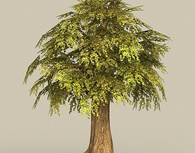 3D asset Game Ready Tree 15