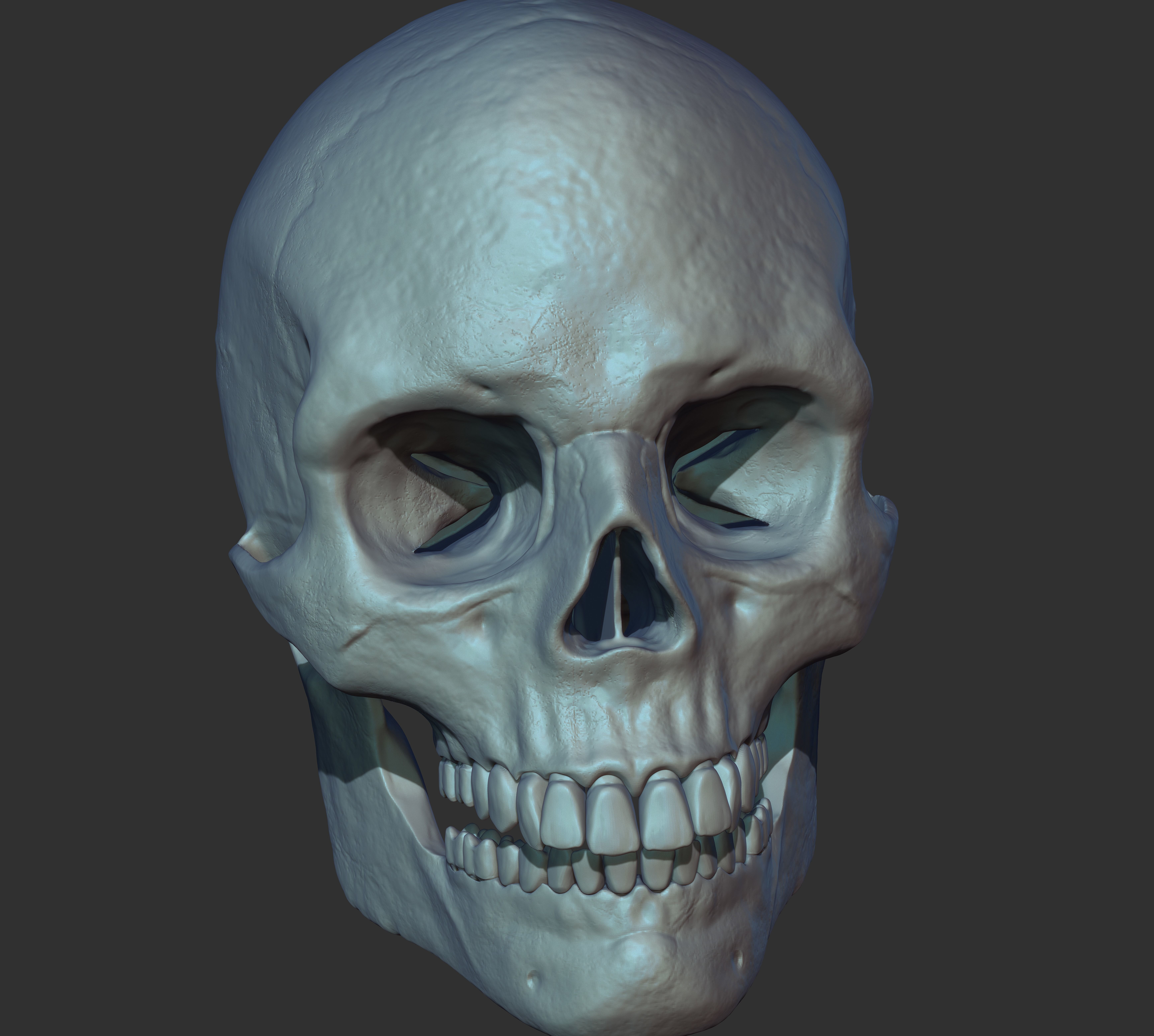 Human Skull 3d ready to Print