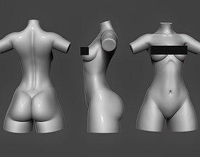 Female Torso 09 3D model