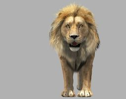 lion animation 3d model animated