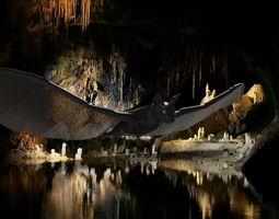 bat flying 3D model