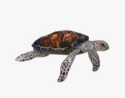 Sea Turtle 3D model animated