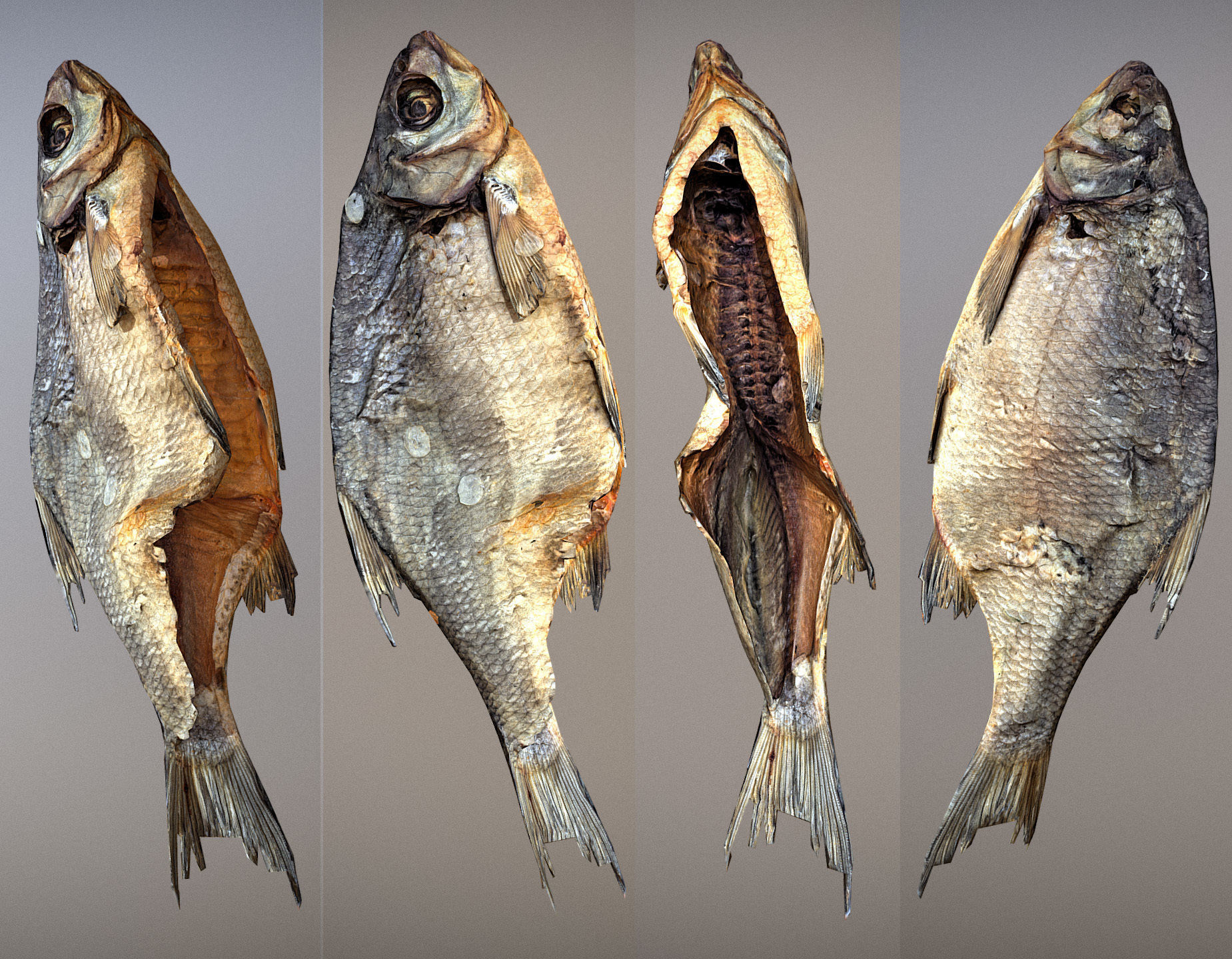 Photorealistic 3Dscan of dried open fish