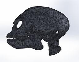 3D printable model monkey skull ct-scan