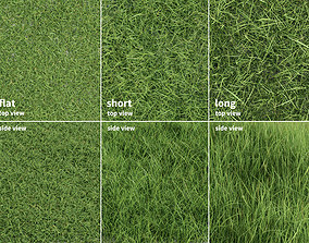 Grass Patches Green Meadow 3D
