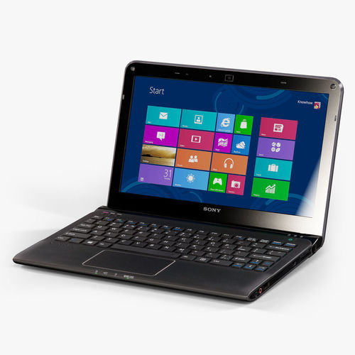 Sony VAIO SVE1112M1R-B laptop