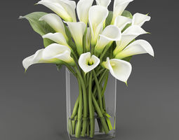 Bouquet with Calla lilies 3D model