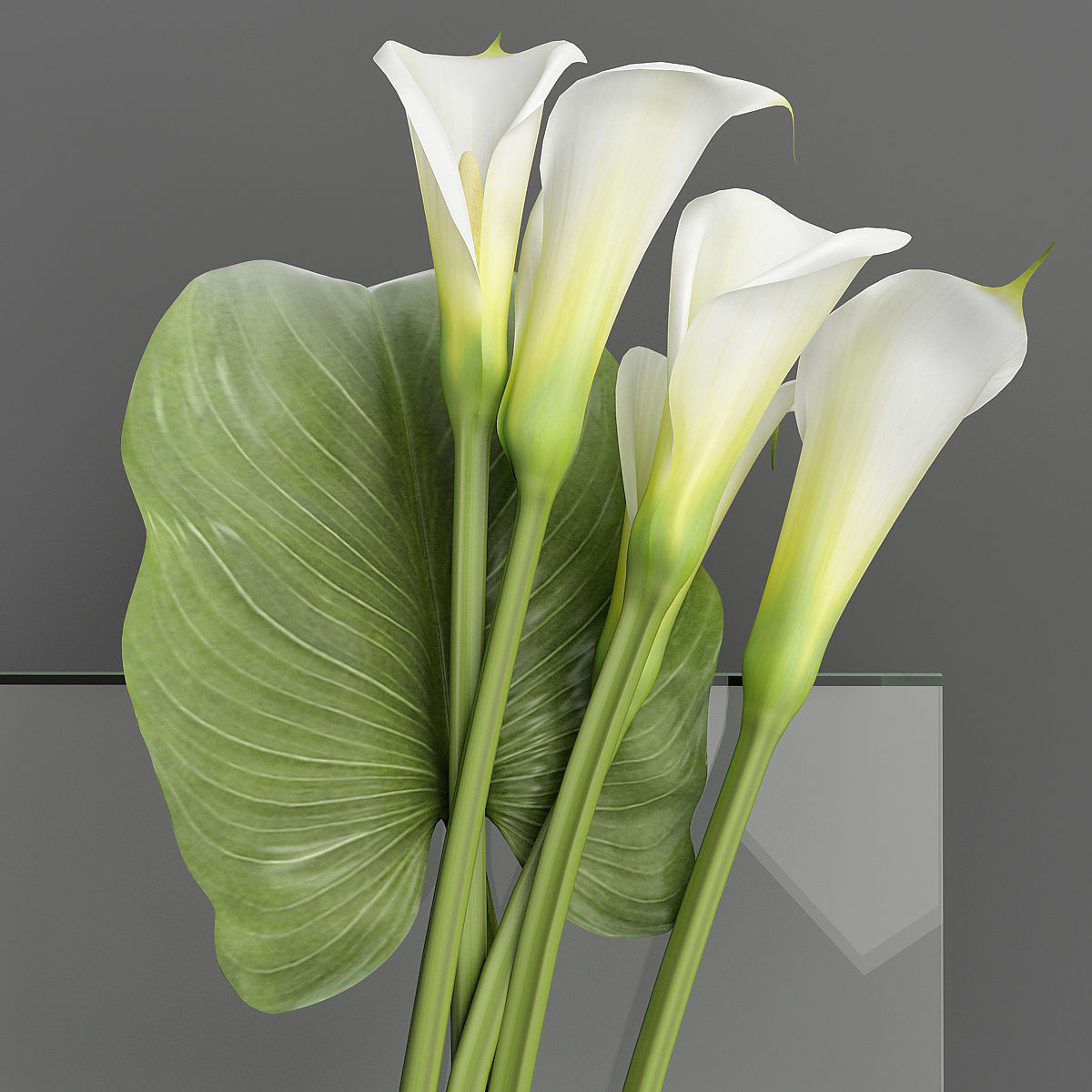 Bouquet with Calla lilies