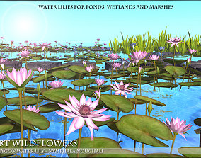 Low Polygon 3D Water lilies for Games and game-ready