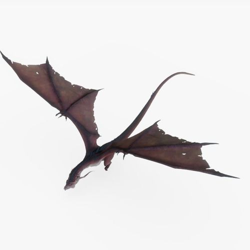 dragon animated 3d model rigged animated fbx blend dae 1