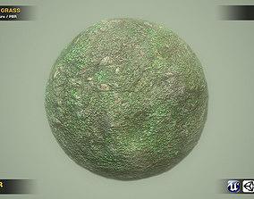 3D asset Grass And Stone