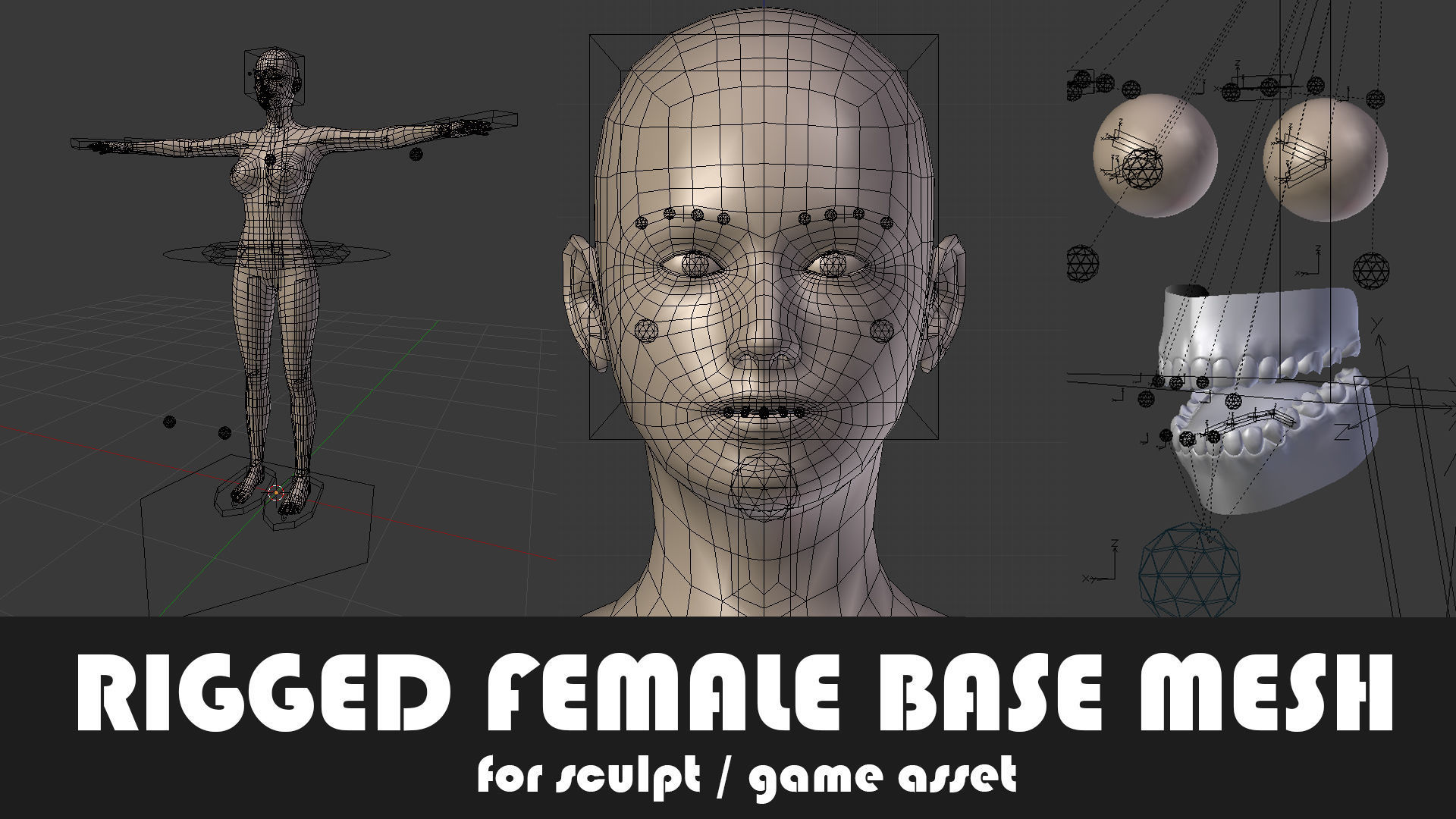 Fully Rigged Female Base Mesh with Face Rig for Blender
