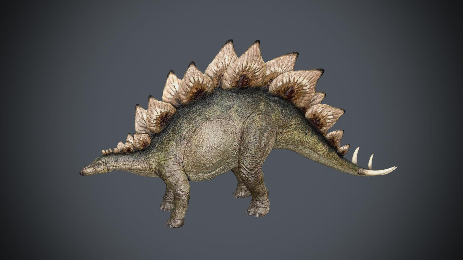Stegosaurus- Maya   3D model