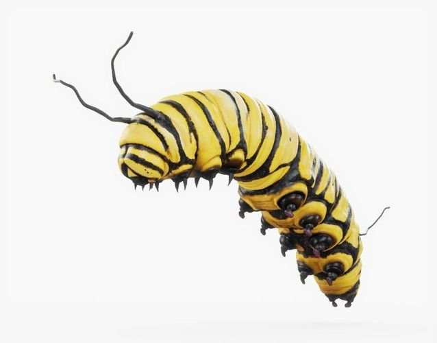 caterpillar 01 rigged 3d model rigged obj mtl 3ds fbx stl blend dae 1