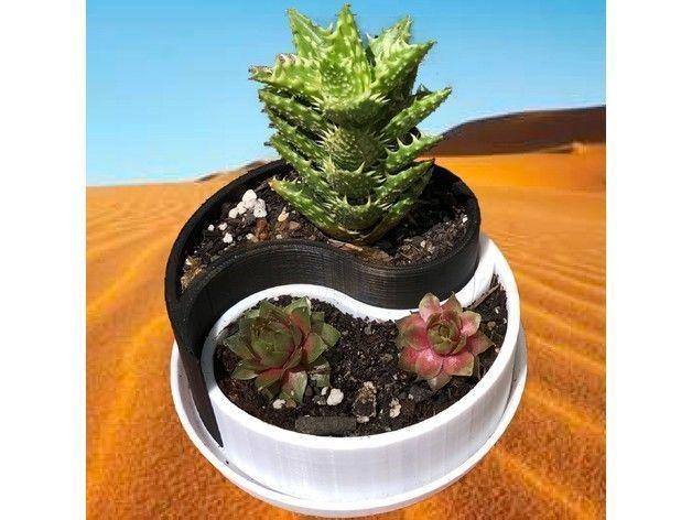 Yin-Yang Planter