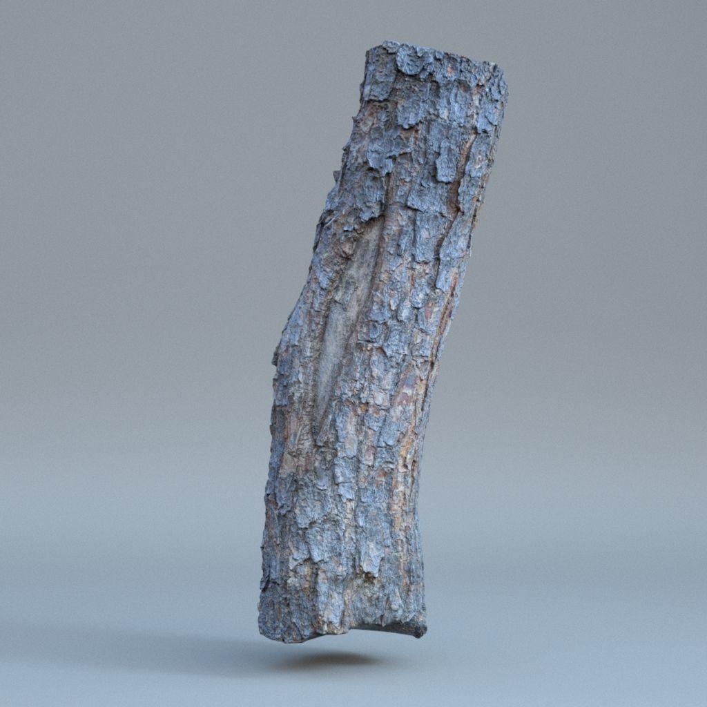 Tree log 01
