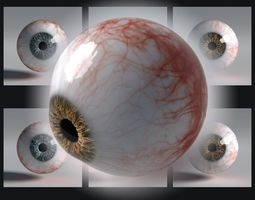 Photorealistic eyes pack 3D model
