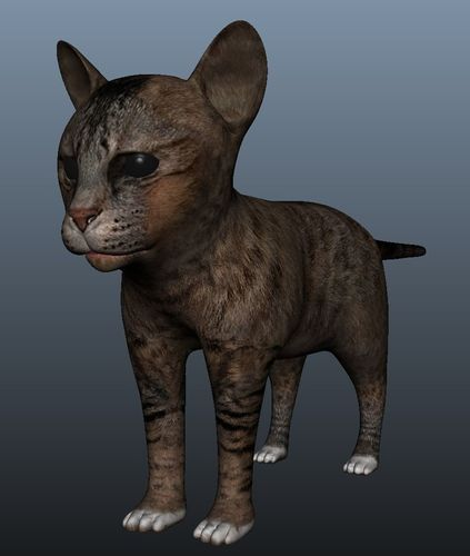 kitten model 3d model obj mtl fbx ma mb 1
