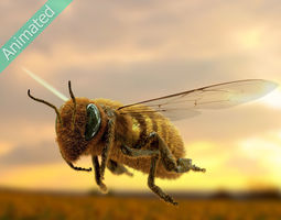 3D Animated bee