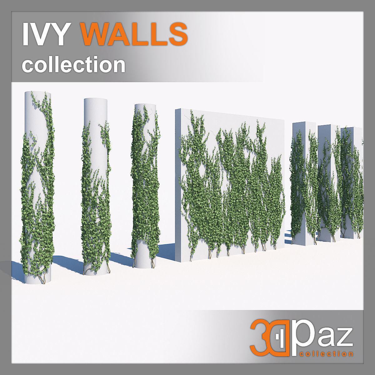 Ivy set 01