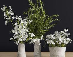 3D Plants Set