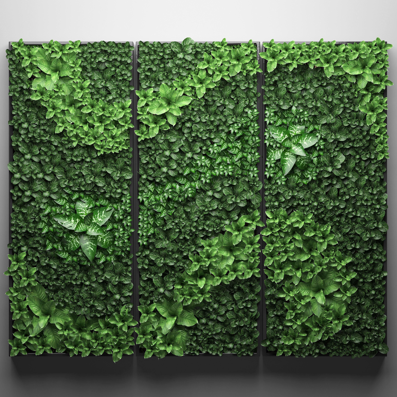 Vertical gardening picture