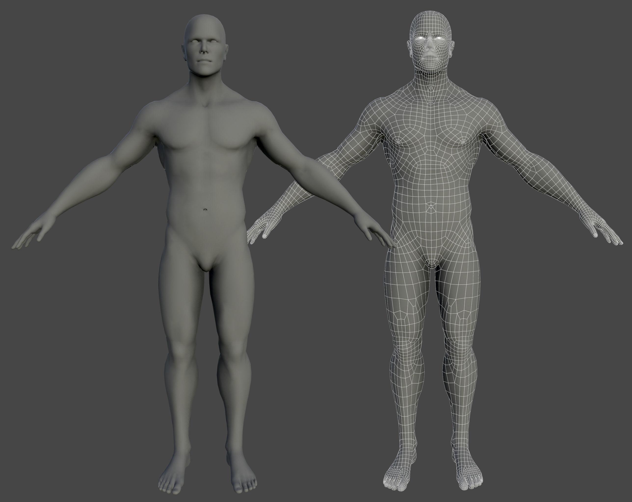 Base mesh Human Man Anatomy 3D model | CGTrader