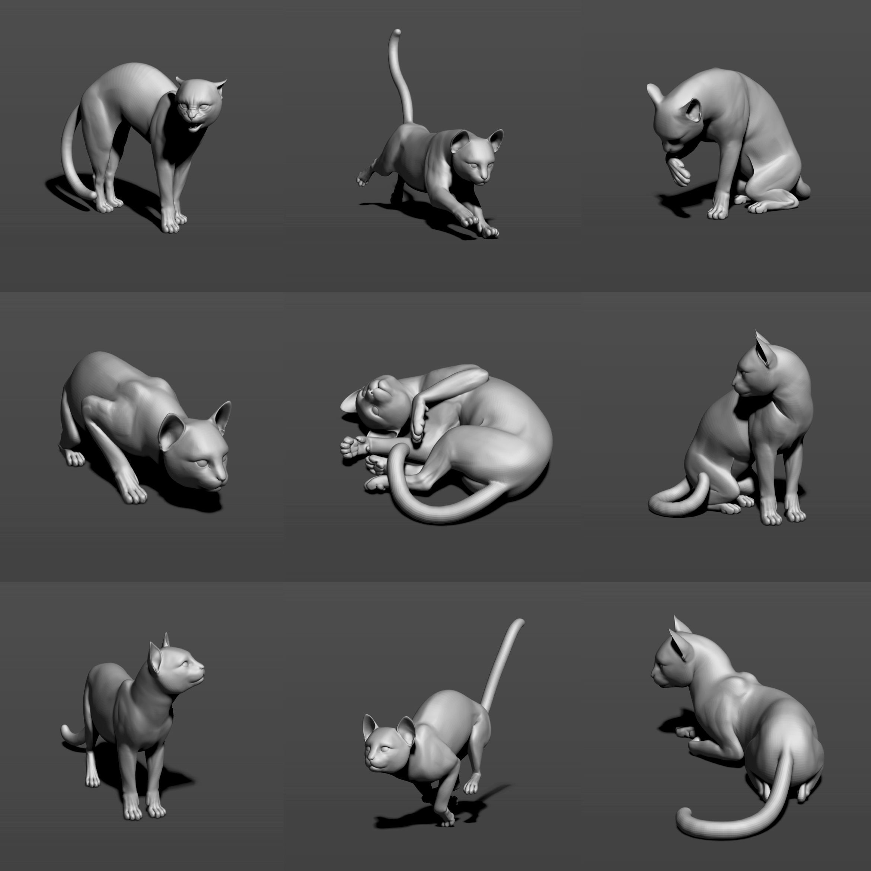 Cat in 10 poses 3D print model   CGTrader