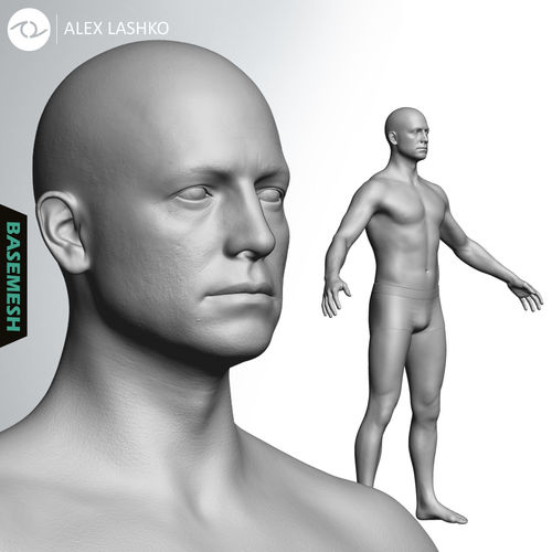 average caucasian male body basemesh 3d model ztl 1