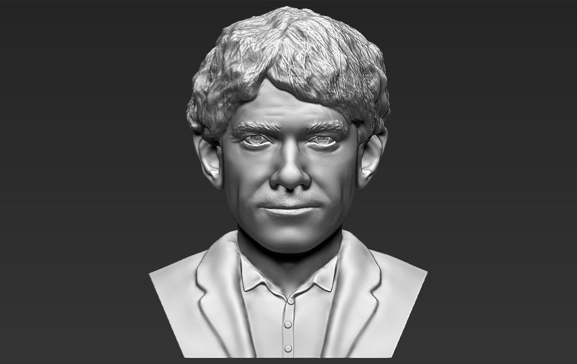 Bilbo Baggins Hobbit bust 3D printing ready stl obj formats
