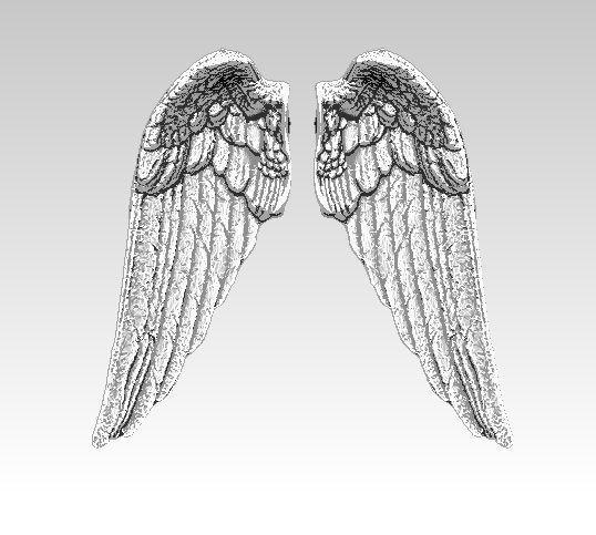 angel bird pair wings 3d print model 3d model obj mtl stl 1