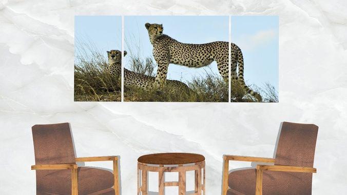 Triptych Wall Art Cheetahs 3D model | CGTrader