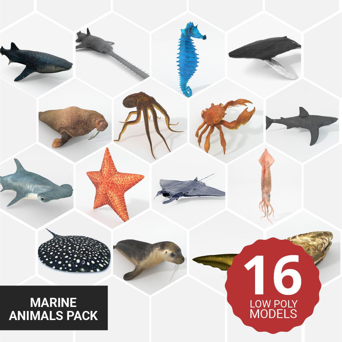 16 Marine Animals Pack - Colletion